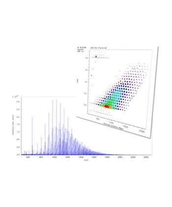 msRepeatFinder 聚合物分析軟體