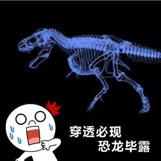 <b>X-ray影像</b> 穿透式X-Ray CT檢測系統產業應用(3)-考古研究、材料研究