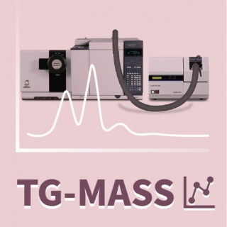 <b>質譜儀-Mass</b> TG-MASS (熱重-質譜分析儀)分析技術